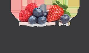 Bleuetière Maryse Bélisle Logo